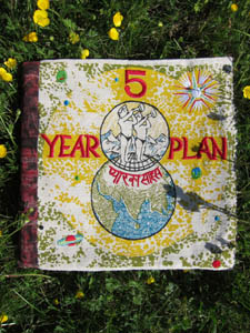 5 year plan book